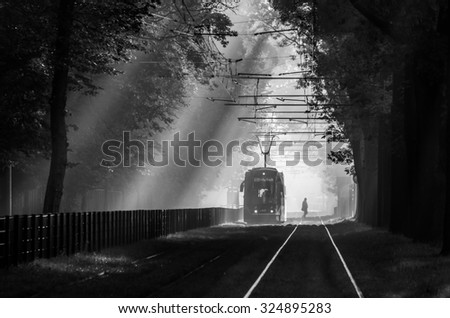 Tram line running through the tree alley in the park, in the morning mist illuminated by the sun - black and white, Krakow, Poland - stock photo
