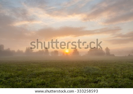 Tranquil foggy grassland and trees at sunrise - stock photo