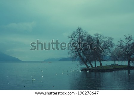 Tranquil landscape - stock photo