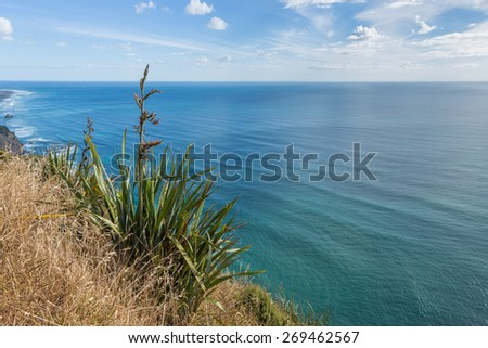 Tranquil ocean view over blooming grass  - stock photo