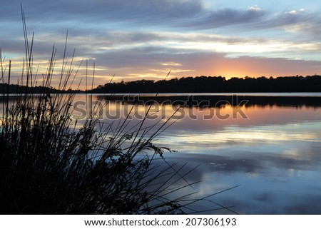 Tranquil scene at Narrabeen Lakes, Northern Beaches, Sydney. The muted colours after the intensity of sunrise fades, pretty  clouds and their reflections in the shallow lake .   Focus to foreground. - stock photo