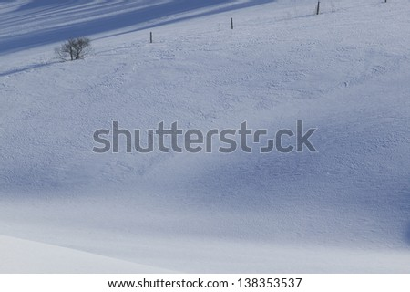 Tranquil scene of a few trees in an open field covered in snow, Stowe, Vermont, USA - stock photo