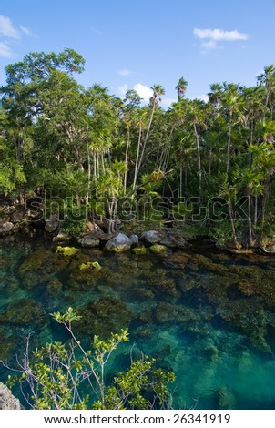 Transparent lake on a rainforest - stock photo