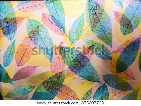 Transparent of leaves on glass door in the kitchen - stock photo