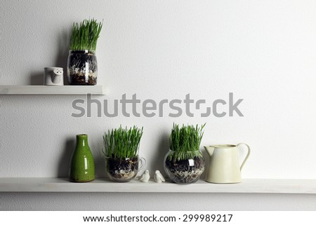 Transparent pots with fresh green grass on shelves - stock photo