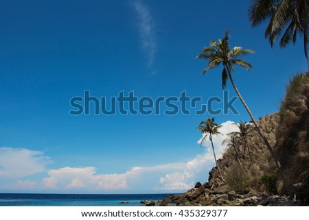 Travel background with palm trees and blue sky. Deep blue sky and palm silhouettes above tropical sea. Tropic beach with sea and palms. Summer vacation background. Image for holidays with text place - stock photo
