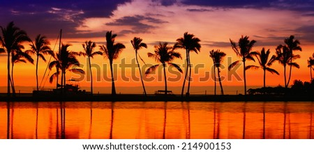 Travel banner. Beach paradise sunset with tropical palm trees. Summer travel holidays vacation getaway colorful concept photo from sea ocean water at Big Island, Hawaii, USA. - stock photo