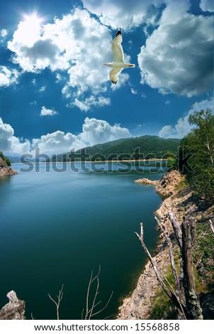 Travel destination and seagull at lake Vidraru in Romania - stock photo