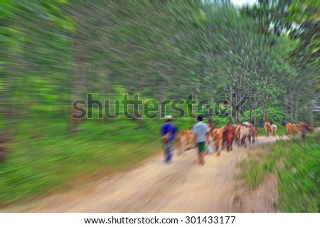 Travel in local of Thailand by original transportation system, Festive background with defocused lights, Bokeh , Lighten, Line of light , speed movement - stock photo