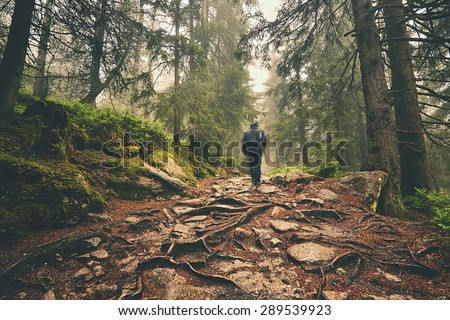 Traveler hiking through deep forest in the mountains - blurred motion - stock photo