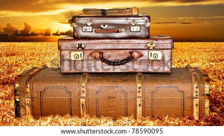 Traveling suitcases in a wheat field at sunset - stock photo