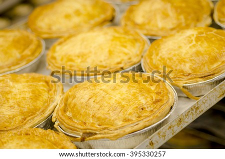 Tray of pies that have just come out of the oven. - stock photo