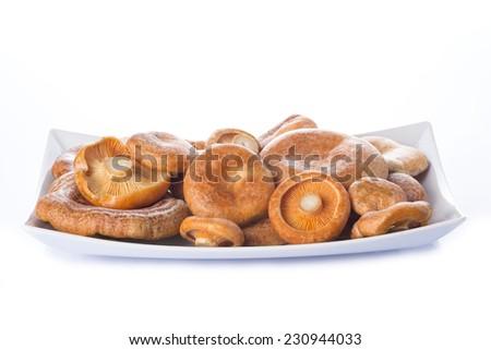 Tray with lactarius deliciosus or saffron milk caps isolated on a white background - stock photo