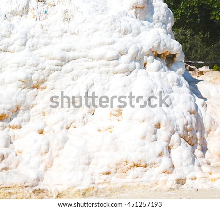 tree     abstract in   pamukkale turkey asia the old calcium bath and travertine water - stock photo
