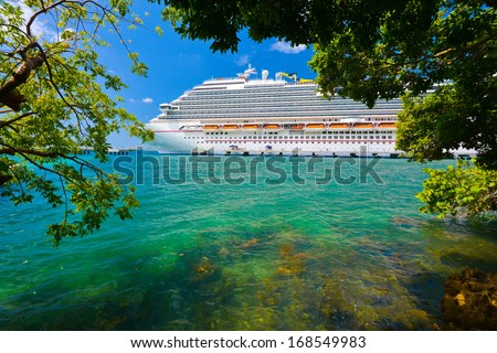 Tree and cruise ship with sun shinning in background. - stock photo