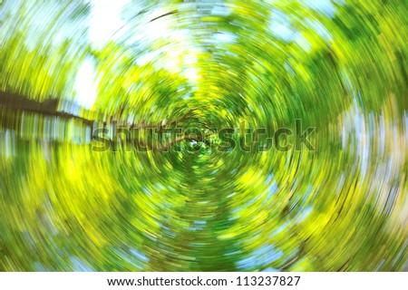 Tree and Rotate - stock photo