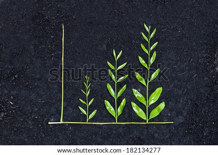 tree arranged as a green graph on soil background / csr / sustainable development / planting a tree / corporate social responsibility - stock photo