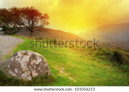 Tree at sunset in irish mountains, Co. Kerry - stock photo