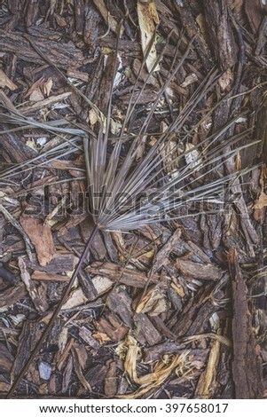 Tree bark chips on the ground - stock photo