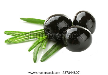 Tree black olives with long leaves isolated on white - stock photo