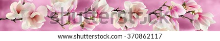 Tree branch with pink flowers - stock photo