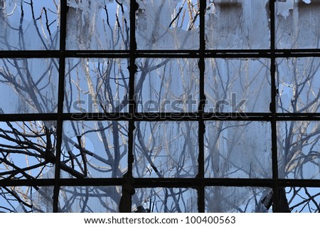 Tree branches and factory window. Broken glass abstract background. - stock photo