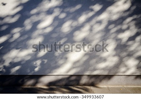 Tree branches shadows on the plaster wall - stock photo
