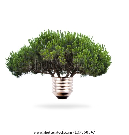 tree bulb, concept of clean and renewable energy - stock photo