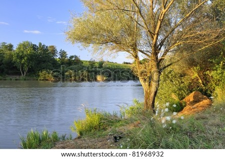 Tree by the lake lit by the morning sunlight - stock photo
