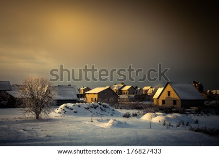 Tree covered with frost on a sunny day in winter, with country houses in the background. - stock photo