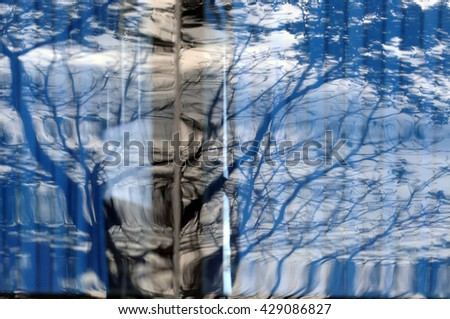 Tree form reflect on mirror  - stock photo