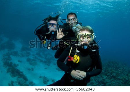 tree freinds scuba diving - stock photo