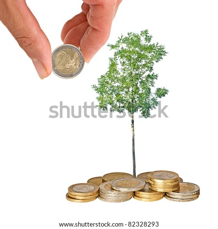 Tree growing from coins - stock photo