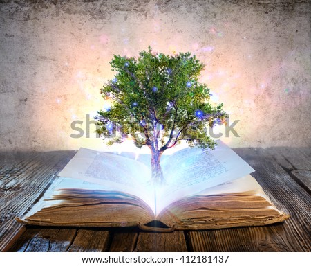 Tree Growing From The Old Book - Magic Shine  - stock photo