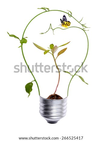 tree growing inside the light bulb and butterfly - stock photo