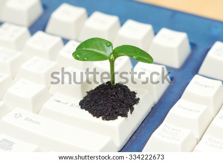 tree growing on a computer keyboard / green it / green computing / csr / it ethics - stock photo