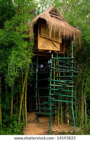Tree house - stock photo