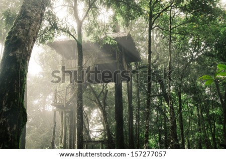 Tree house - stock photo