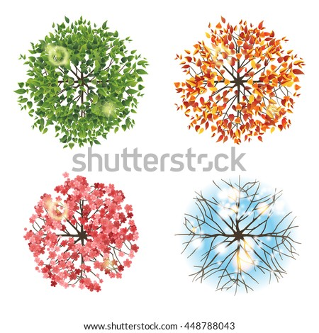 Tree icon in 4 different seasons - top view. Easy to use in your landscape design projects!  - stock photo