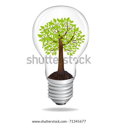 Tree In Light Bulb, Eco Concept, Isolated On White Background - stock photo