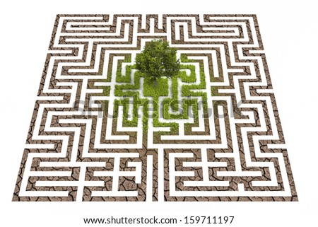 Tree in lost in labyrinth - stock photo
