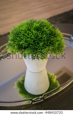 Tree in white pot decorate on a table - stock photo
