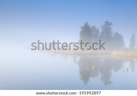 tree island on lake in morning fog - stock photo