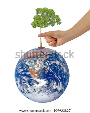 Tree on Earth as a symbol of peace.Elements of this image furnished by NASA - stock photo