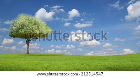 Tree on hill and blue sky with clouds in the background. - stock photo