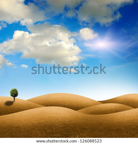 tree on the green field at summer - stock photo