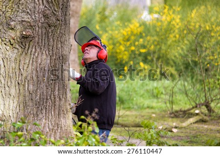 Tree pruning by a man with a chainsaw,  with a safety helmet on - stock photo
