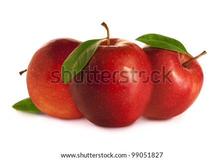 Tree red apples with leaves - stock photo