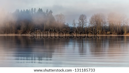 Tree reflected in river on misty morning - stock photo