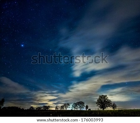 Tree silhouettes in a starry night - stock photo